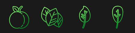 Set line Leaf or leaves, Peach fruit, Leaf or leaves and Leaf or leaves. Gradient color icons. Vector. 矢量图像