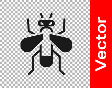Black Insect fly icon isolated on transparent background. Vector.