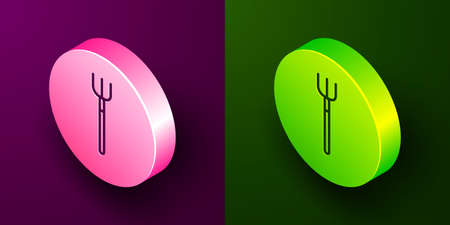 Isometric line Garden pitchfork icon isolated on purple and green background. Garden fork sign. Tool for horticulture, agriculture, farming. Circle button. Vector.