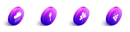 Set Isometric Cloud with rain, Honey dipper stick, Leaf or leaves and Grape fruit icon. Vector. Ilustrace