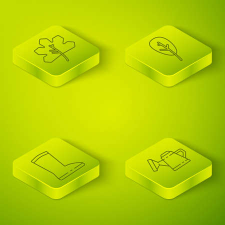 Set Isometric Leaf or leaves, Waterproof rubber boot, Watering can and Leaf or leaves icon. Vector Hình minh hoạ