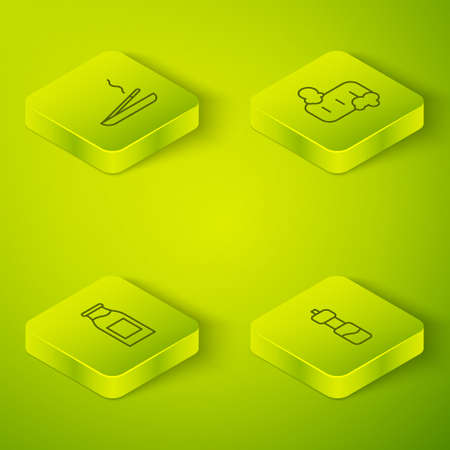 Set Isometric Bar of soap with foam, Bottle milk, water and Scented spa stick icon. Vector Hình minh hoạ