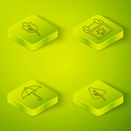 Set Isometric Calendar with autumn leaves, Umbrella, Leaf or leaves and Leaf or leaves icon. Vector