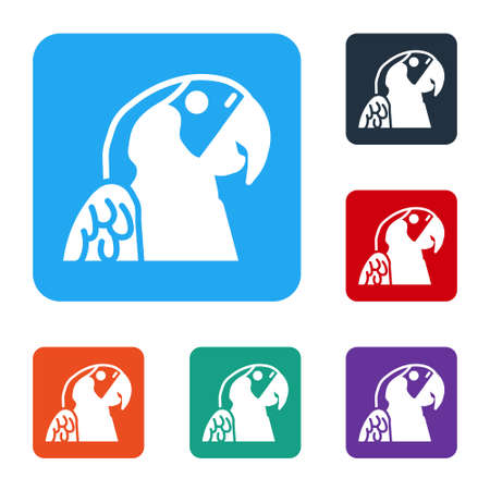 White Macaw parrot bird animal icon isolated on white background. Animal symbol. Set icons in color square buttons. Vector
