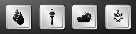 Set Water drop, Honey dipper stick, Sun and cloud weather and Leaf or leaves icon. Silver square button. Vector