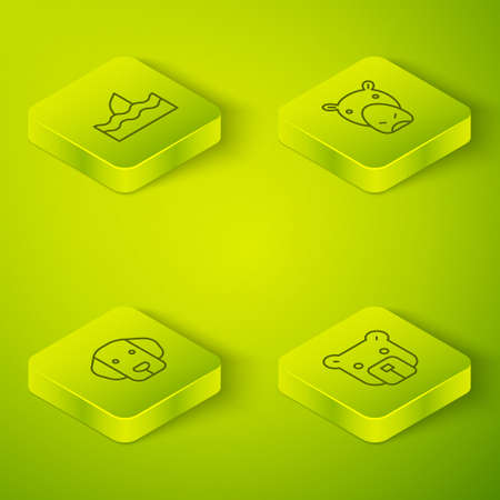 Set Isometric Hippo or Hippopotamus, Dog, Bear head and Shark fin in ocean wave icon. Vector