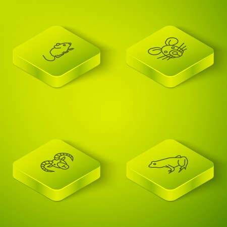 Set Isometric Rat head, Head of goat or ram, Frog and icon. Vector