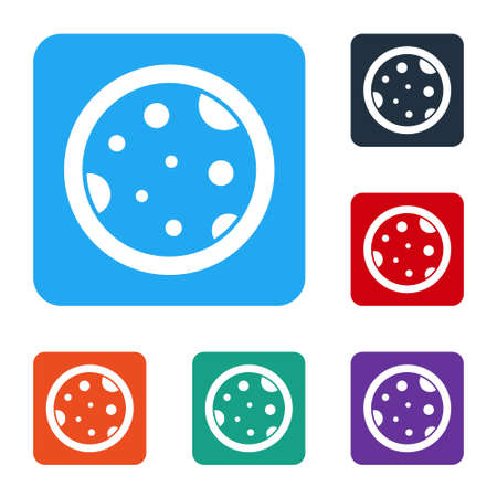 White Petri dish with bacteria icon isolated on white background. Set icons in color square buttons. Vector Illustration