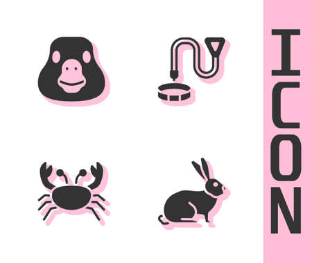 Set Rabbit, Goose bird, Crab and Collar with name tag icon. Vector