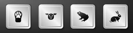 Set Paw print, Pig, Frog and Rabbit icon. Silver square button. Vector