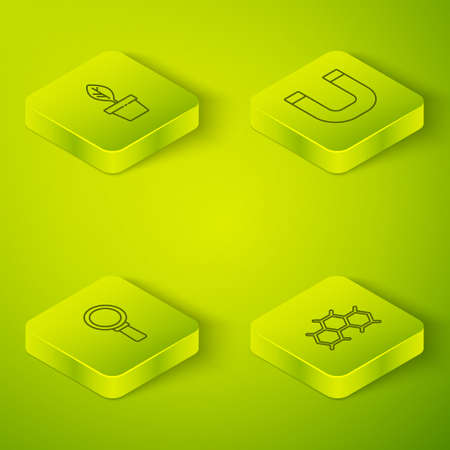 Set Isometric Magnet, Magnifying glass, Chemical formula and Plant pot icon. Vector