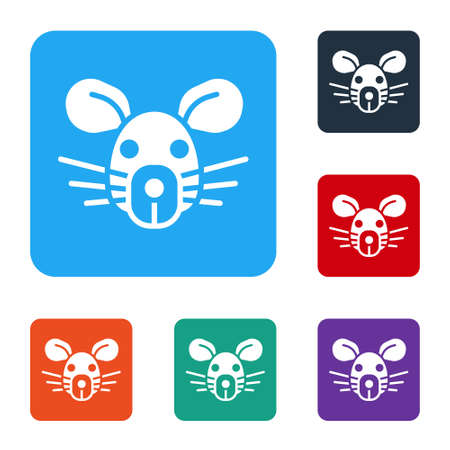 White Rat head icon isolated on white background. Mouse sign. Animal symbol. Set icons in color square buttons. Vector 向量圖像