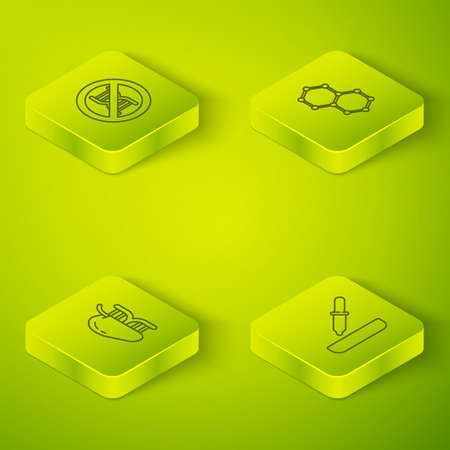 Set Isometric line Chemical formula, Genetically modified apple, Pipette and Stop GMO icon. Vector
