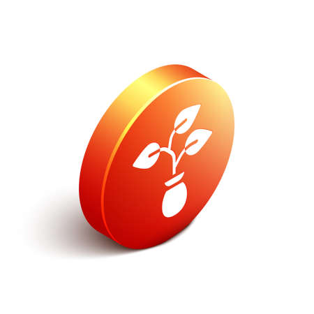 Isometric Plant icon isolated on white background. Seed and seedling. Leaves sign. Leaf nature. Orange circle button. Vector