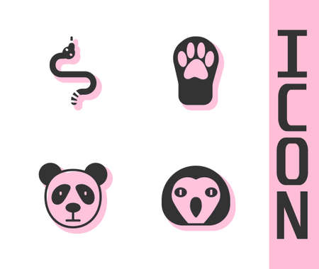 Set Owl bird, Snake, Cute panda face and Paw print icon. Vector