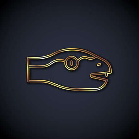 Gold line Snake icon isolated on black background. Vector  イラスト・ベクター素材