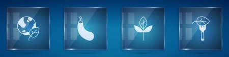 Set Earth globe and leaf, Eggplant, Leaf or leaves and Vegan food diet. Square glass panels. Vector