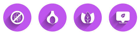 Set Gluten free grain, Garlic, Leaf or leaves and Vegan food diet icon with long shadow. Vector