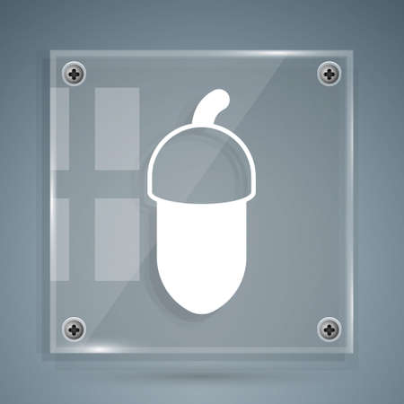 White Acorn icon isolated on grey background. Square glass panels. Vector