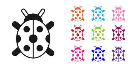 Black Ladybug icon isolated on white background. Set icons colorful. Vector Ilustração