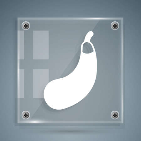 White Eggplant icon isolated on grey background. Square glass panels. Vector