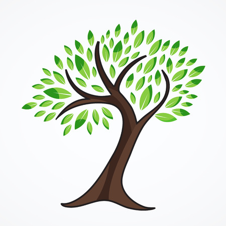 Green tree isolated in white background.