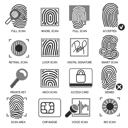 security technology: Information security icons. Vector information technology protection icons Illustration