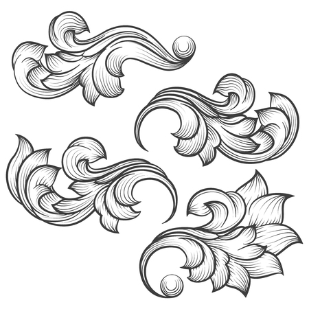 acanthus: Baroque engraving leaf scroll. Retro foliage ornament element vector illustration