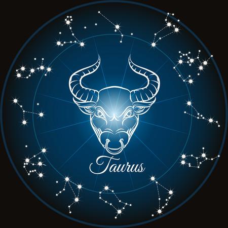 costellazioni: Zodiac sign taurus and circle constellations. Vector illustration