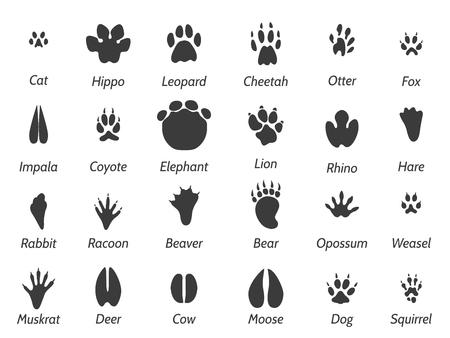 hipopotamo cartoon: Animales de la fauna huellas negras establecidos en el fondo blanco con signos. iconos conjunto de vectores