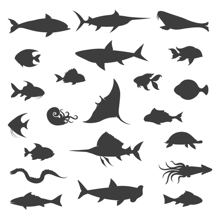 ruff: Fish symbol silhouettes. Fishes black vector icons on white background