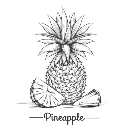 Doodle sweets pineapple. Hand drawn exotic dessert eating. Ilustração