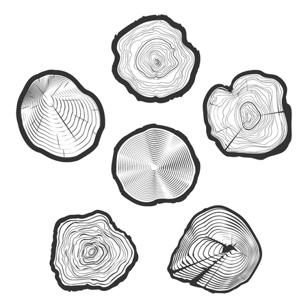 wood cuts: Tree-rings vector set. Wood ring saw cuts with linear tree texture