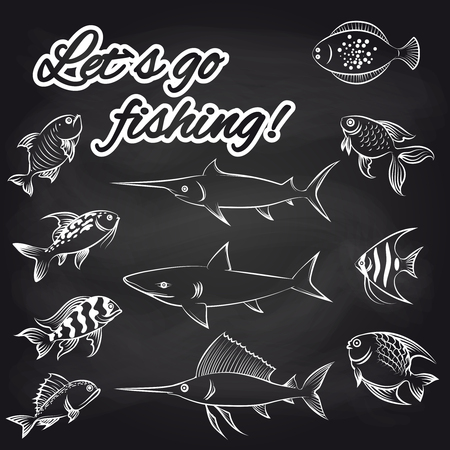 plaice: White hand drawn fish on chalkboard and text Lets go fishing. Vector illustration
