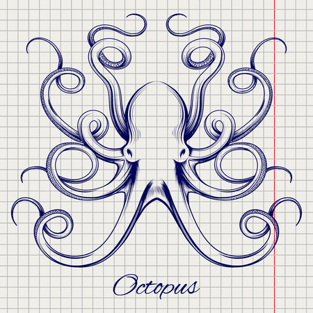 black octopus: Hand drawn octopus vector. Ball pen imitation sketch