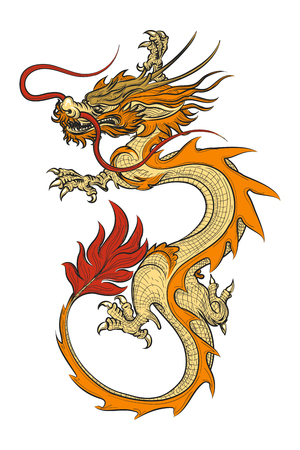 Asian dragon vector illustration. Chinese vintage oriental draghi Illustration
