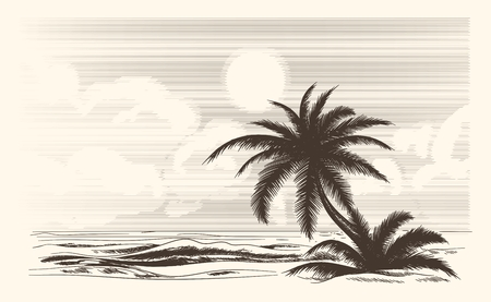 seacoast: Vintage palm tree sketch. Vector palmtree ocean front in hand drawn style