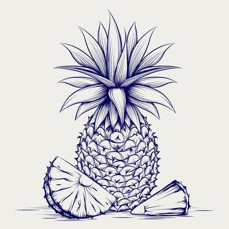 ball pen: Ball pen pineapple isolated on grey background. Sketch pineapple vector illustration Illustration