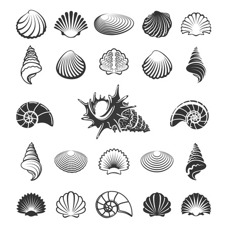 cockleshell: Sea shell silhouettes. Marine sand shells icons like nautilus or scallop vector illustration