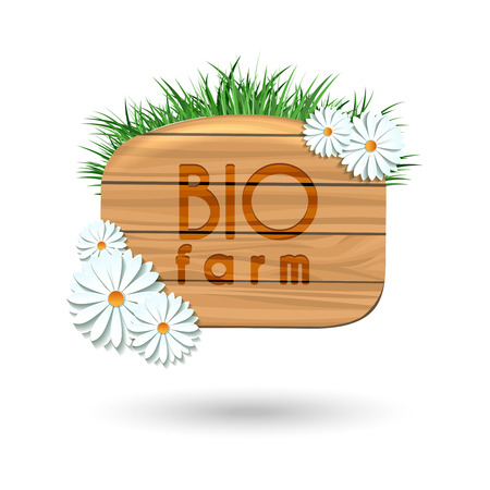 wood panel: Wood panel banner with camomile flowers and grass isolated on white. Vector illustration Illustration