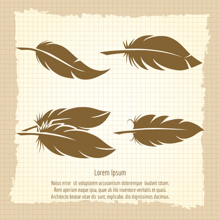 sketchpad: Vintage feather set on notebook page in retro design vector illustration