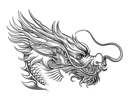 black and white dragon: Hand drawn chineese dragon isolated on white background. Vector illustration