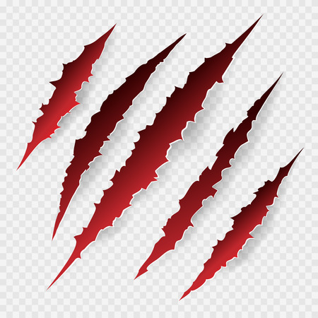 Scratches isolated on transparent background. Vector scratch set