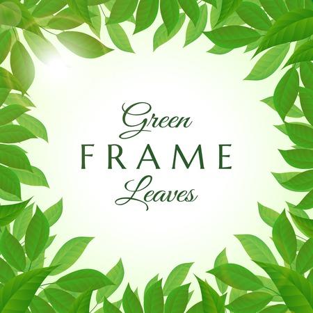 leaves frame: Fresh and lush green leaves frame vector illustration