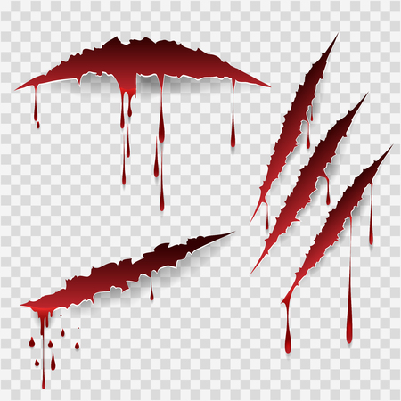 Bloody scratches. Vector scratch marks with blood drops Illustration