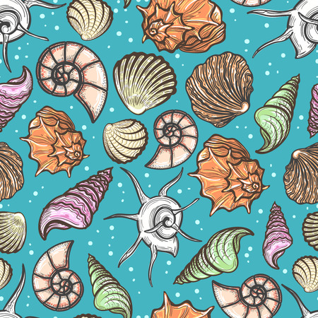 oceanside: Ocean seamless pattern with colorful seashells vector illustration