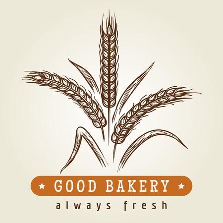 Good bakery hand drawn logo. Drawing sketch wheat ears retro emblem, vector illustration