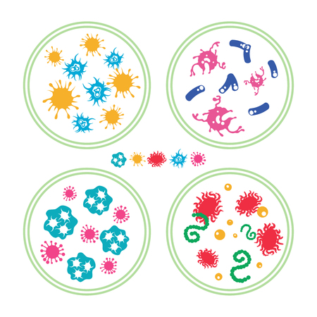 species plate: Colorful phatogen virus and immune bacteries in Petri dish, vector illustration