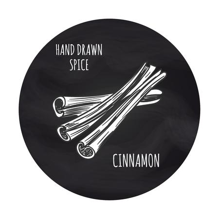 Hand drawn spice cinnamon in blackboard round. Vector cinnamon sketch icon design Illustration