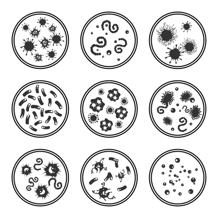 Phatogen virus and immune bacteries in Petri dish isolated on white, vector illustration